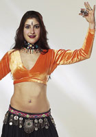 Velvet - Like Long Sleeve Choli